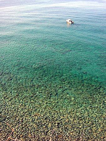 チンクエ海