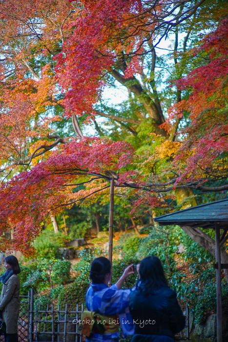 京都112511月-7
