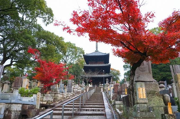 1128京都-12