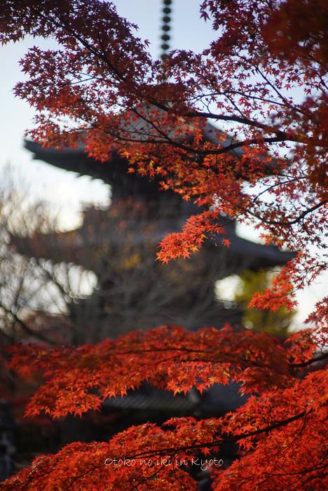 1123京都_2_11月-7