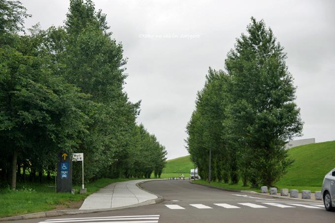 0903-11並木