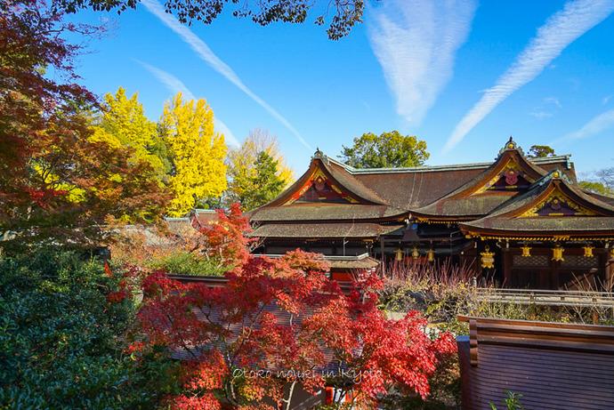 1123京都11月-4