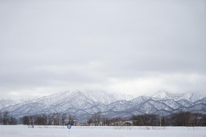 0301富良野2月-117