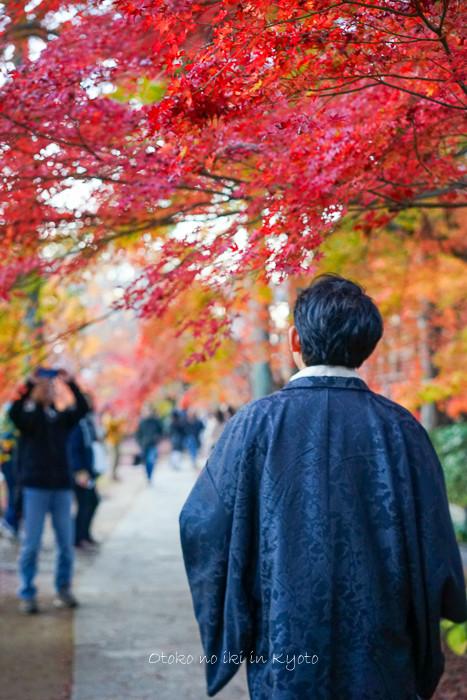 京都1123_211月-1-2
