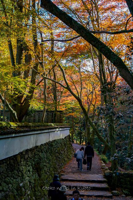 そうだ京都いこう20192019-67
