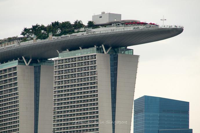 シンガポール20142014-16