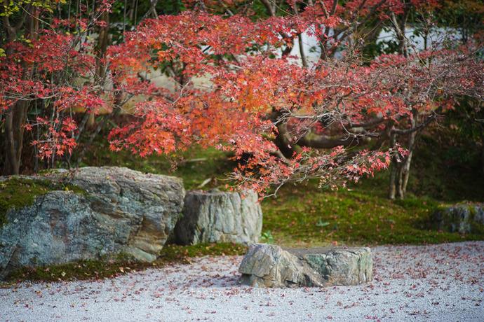 1108京都11月-22