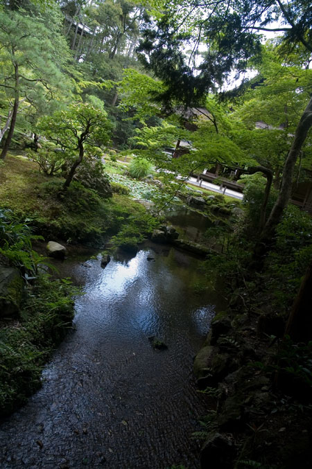 池泉廻遊庭園