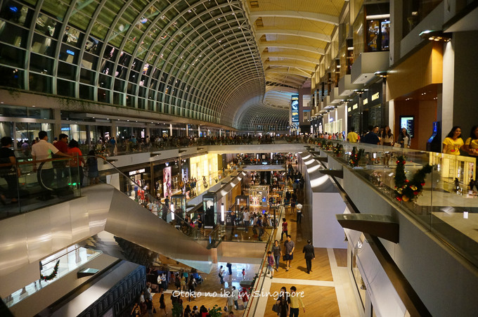 0113Singapore12月-22