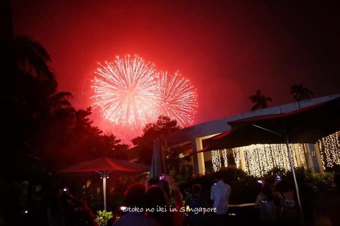 0113Singapore1月-28