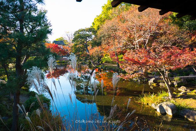 1130京都-11