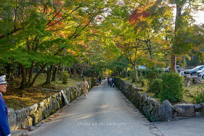 1118_京都2018-15