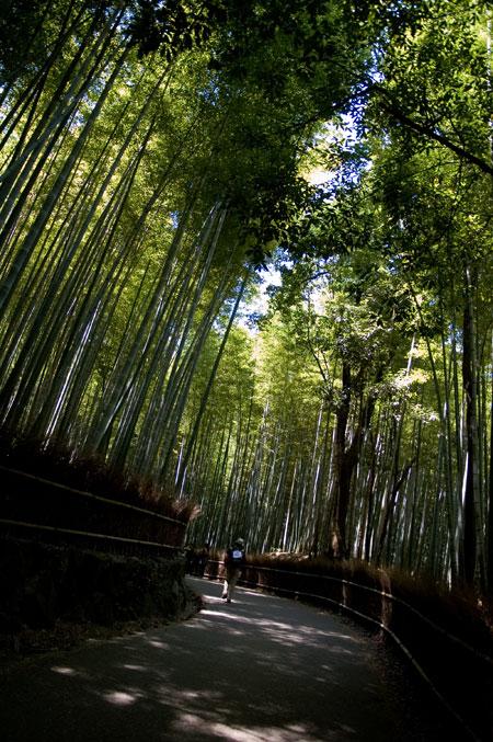 嵐山竹林道
