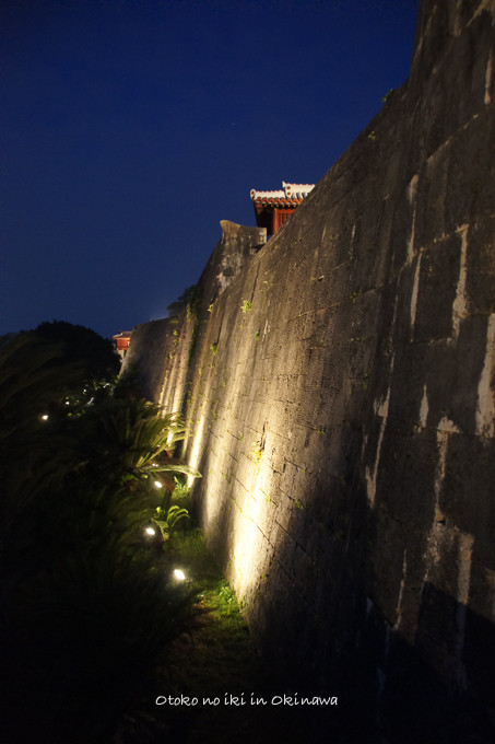0503沖縄4月-5
