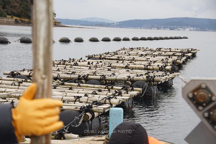 1110牡蠣漁2016-11