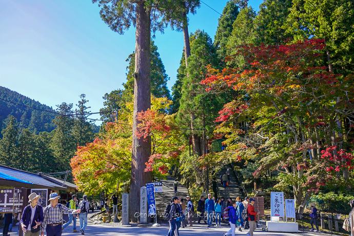 京都10月2018-82