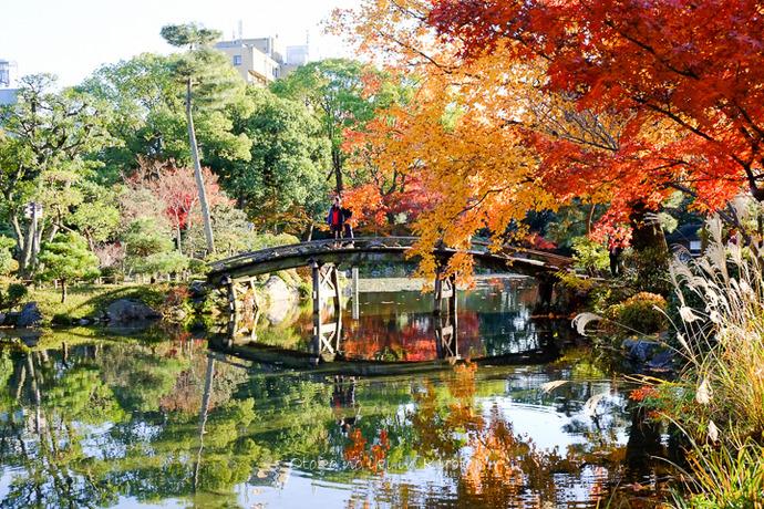 1115渉成園11月-11