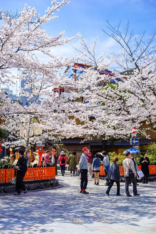 0407京都4月-10