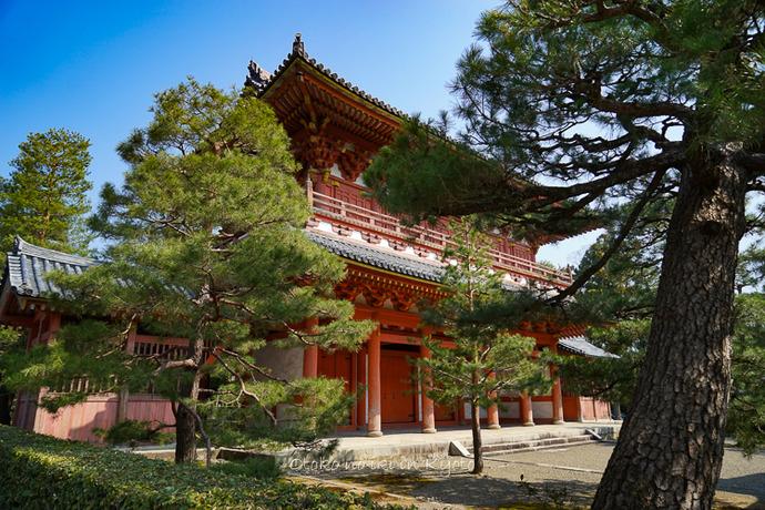 0402京都3月-165