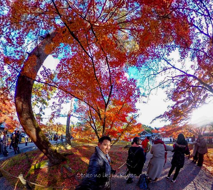 1123京都_2_11月-4