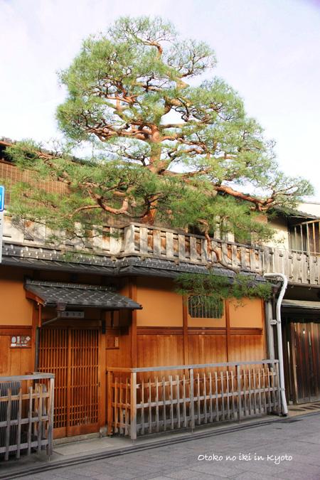 1224-6祇園