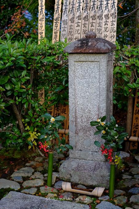 1203常照寺11月-20