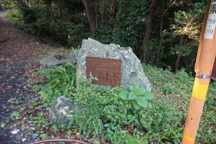 0827答志島RF6月-2