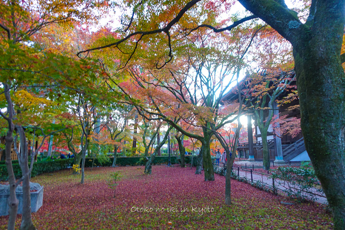 京都1125_RX100夕11月-3