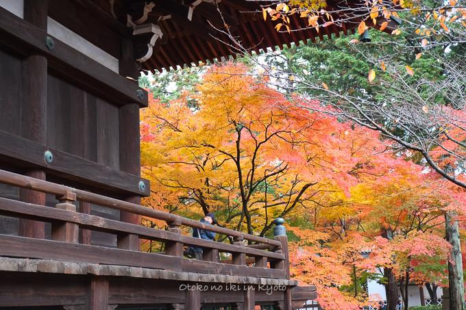 0404京都紅葉11月-11