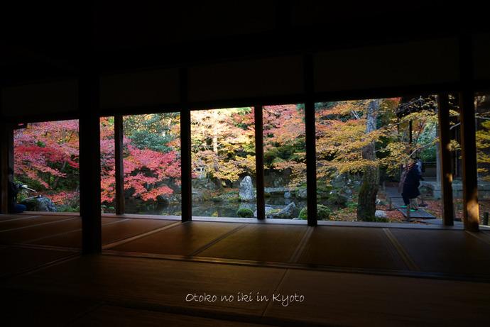 1124京都11月-16