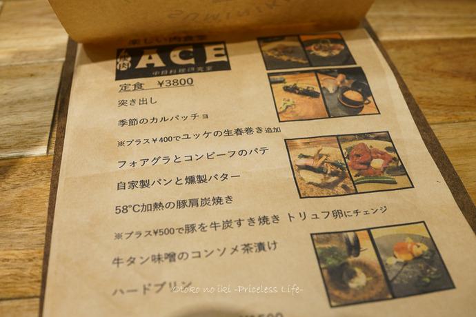 ACE2019-4