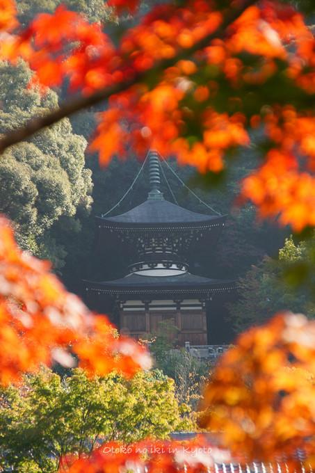 1101永観堂10月-46