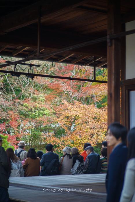 1108京都11月-21