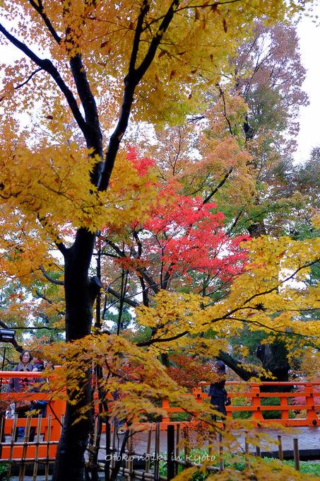 11月京都2012北野天満宮-5