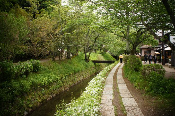 201205京都朝マラソン5月-21