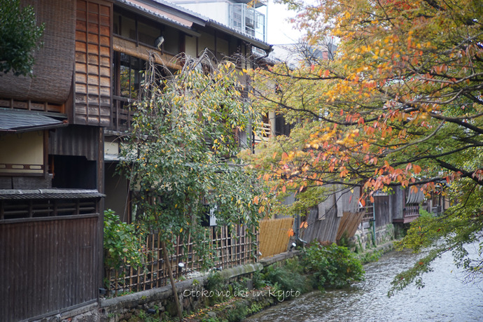 1108京都11月-3