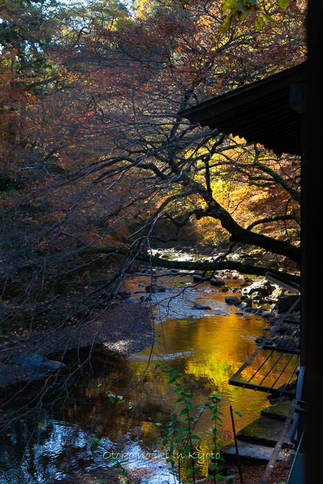 そうだ京都いこう20192019-53