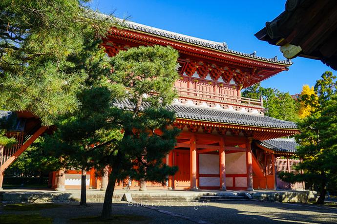 そうだ京都いこう20192019-6