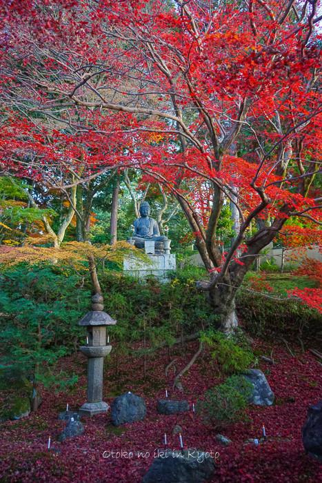 京都112511月-3