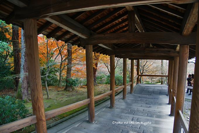 0220-1東福寺渡