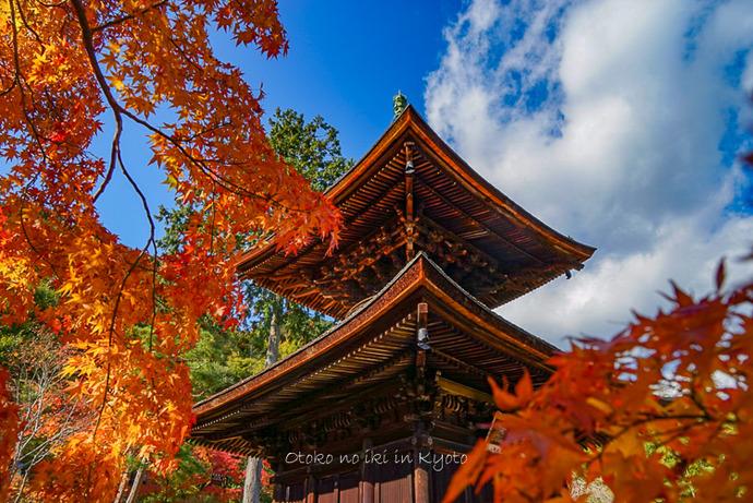 1124京都11月-11