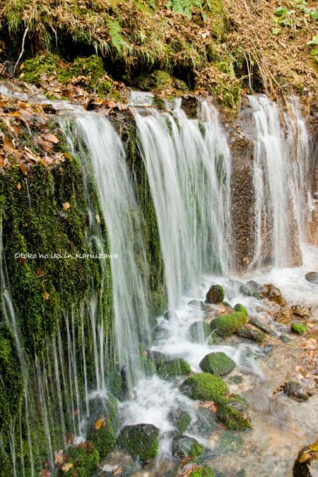 1120-2白糸の滝寄