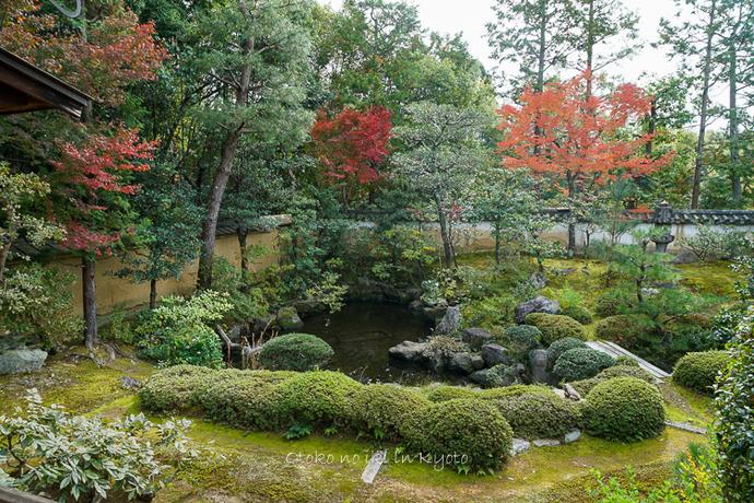 そうだ京都いこう20192019-187