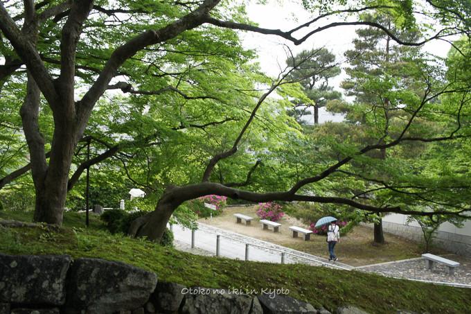 201205京都朝マラソン5月-7