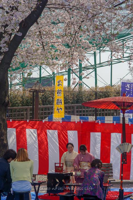 花見2019-8