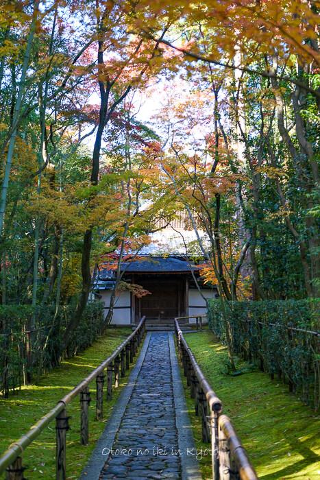 そうだ京都いこう20192019-8