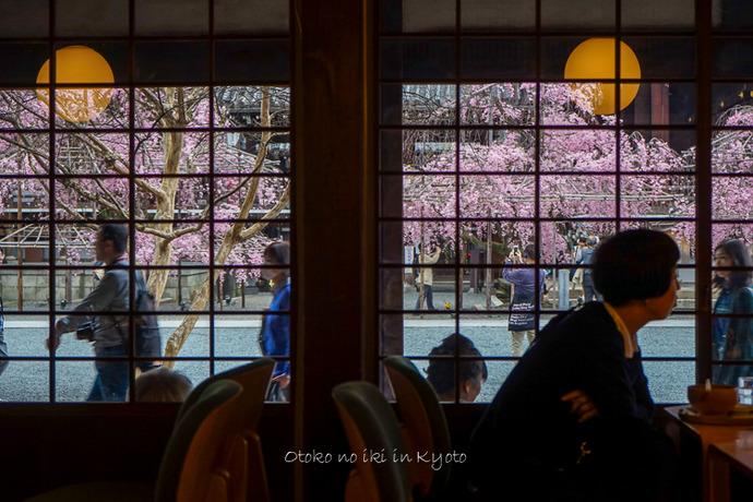 0407京都4月-116