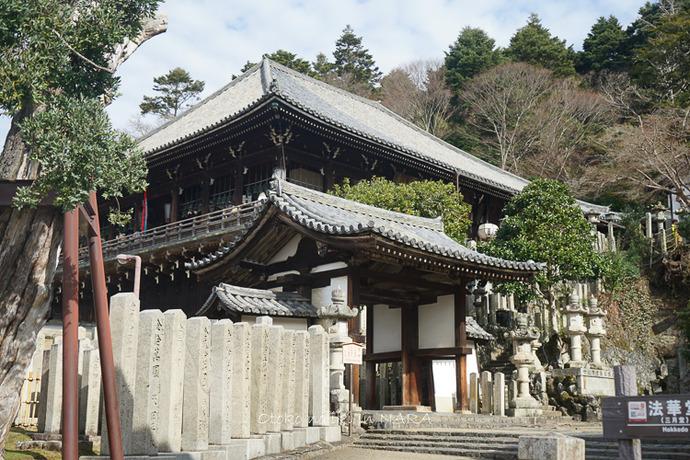 奈良2020-25