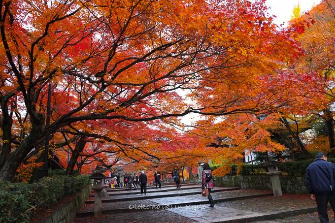 0404京都紅葉11月-8
