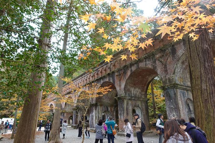 京都1125_RX100朝11月-9